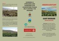 Gunnera - Mayo County Council