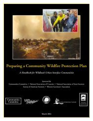 Preparing a Community Wildfire Protection Plan - National ...