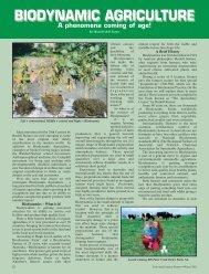 A Phenomena Coming of Age - Biodynamic Agriculture Australia