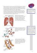 Il sangue - blutspendeintra.ch - Page 5