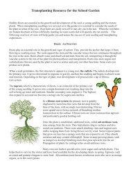 Transplanting Resource for the School Garden - Massachusetts ...