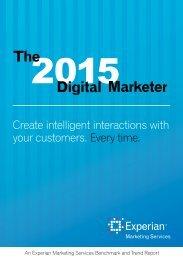 report-digital-marketer-report-2015