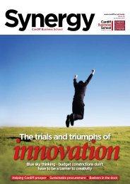 Issue 12 (Summer 2011) - Cardiff Business School - Cardiff University