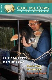 CFC January 2012 Newsletter - Care for Cows
