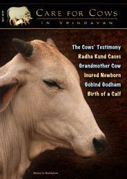 The Cows' Testimony Radha Kund Cases ... - Care for Cows