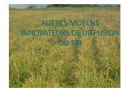 Lire la suite - Groupement SRI Madagascar