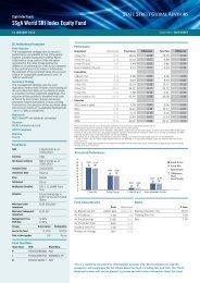 SSgA World SRI Index Equity Fund,Jan2013 - The Index People BV
