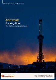 Amity Insight - Fracking