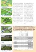 De egel als bio-indicator - Zoogdierwinkel - Page 5