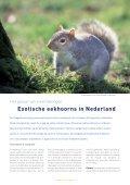De egel als bio-indicator - Zoogdierwinkel - Page 7