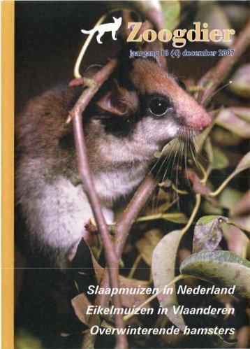 Inhoud Zoogdier 18(4) december 2007 - Zoogdierwinkel