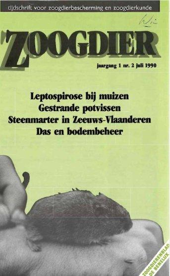 Leptospirose bij muizen Gestrande potvissen ... - Zoogdierwinkel