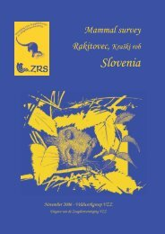 Mammal survey Rakitovec - De Zoogdiervereniging