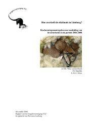 2008.15 Eikelmuis Limburg_0.pdf - Zoogdierwinkel