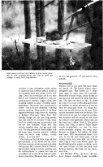 Zoogdier, voor de verlichte geesten - Zoogdierwinkel - Page 4