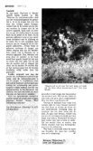 Zoogdier, voor de verlichte geesten - Zoogdierwinkel - Page 5