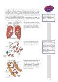 Le sang - blutspendeintra.ch - Page 5