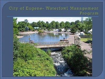 City of Eugene's Waterfowl Management - pncwa