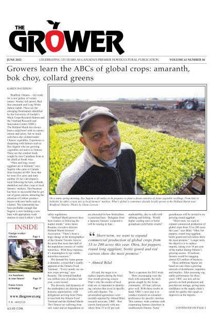 Growers Learn The Abcs Of Global Crops Amaranth The Grower Semantic scholar profile for elliot choi, with 2 highly influential citations and 5 scientific research papers. www yumpu com