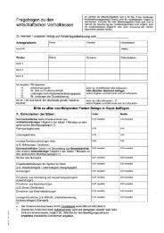 Fragebogen zu den wirtschaftlichen Verhältnissen