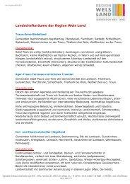 Region Wels Land Landschaftsraeume.pdf