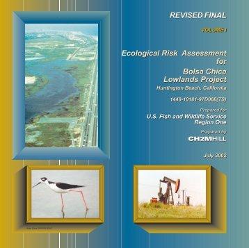 1.1 MB pdf - Bolsa Chica Lowlands Restoration Project