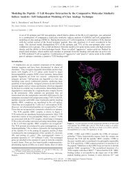 Modeling the Peptide-T Cell Receptor Interaction by the ...