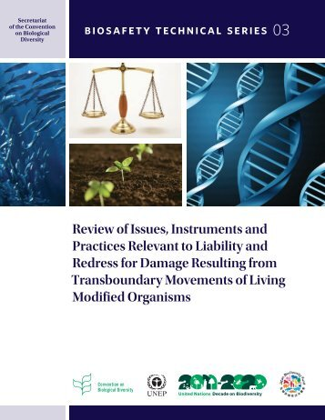 Review of Issues, Instruments and Practices Relevant to Liability ...