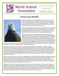 Preserving Wildlife - World Animal Foundation