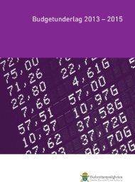 Budgetunderlag 2013-2015 - Ekobrottsmyndigheten