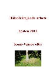 Kuni-Vassors dokumentering 2012.pdf - Folkhälsan