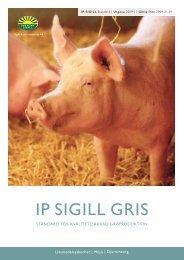 IP sIgIll grIs - Velferdsprotokoller