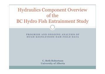 Hydronet Symposium Presentation - Beth Robertson