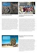 Broschüre Firmenportrait (PDF) - Staufenbiel.ch - Seite 5