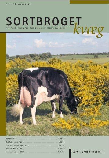 SDM BLADET 1-07 - Dansk Holstein