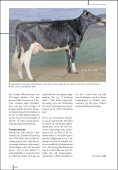 SDM BLADET 1-07 - Dansk Holstein - Page 5
