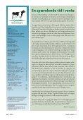 4 Er registreringerne pengene værd? . . . . . 38 ... - Dansk Holstein - Page 3