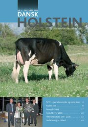 4-2008 - Dansk Holstein