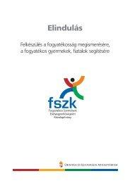 A kiadvány letöltése - Fogyatékos Személyek Esélyegyenlőségéért ...