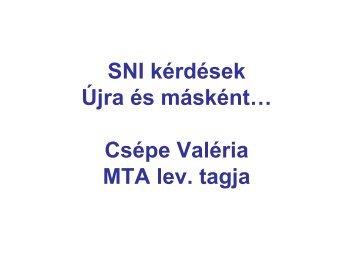 Előadás – Csépe Valéria: SNI kérdések - Oktatási Kerekasztal