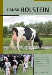 3-2007 - Dansk Holstein