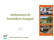 Fremtidens kvægavl - Dansk Holstein
