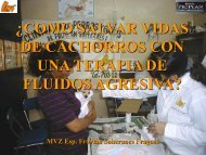 TERAPIA DE FLUIDOS - VeterinariosenWeb