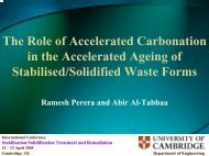 Accelerated carbonation - Starnet
