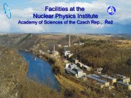 Facilities at the Nuclear Physics Institute