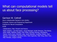 Computational Models of Visual Expertise - Temporal Dynamics of ...