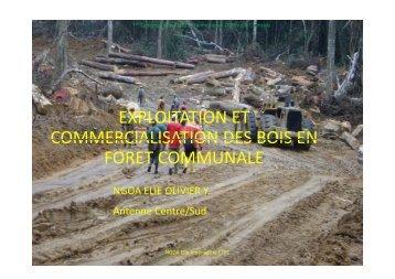 Exposé IV - Centre Technique de la Forêt Communale