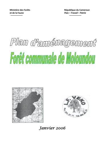 Plan d'aménagement - Centre Technique de la Forêt Communale