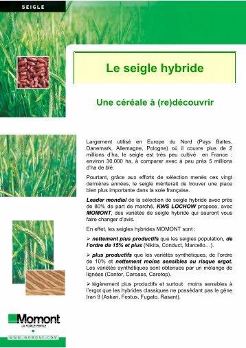 Le seigle hybride une céréale à \(re\)découvrir 4 pages a4 - MOMONT