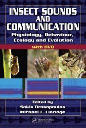 insect-sounds-and-communication